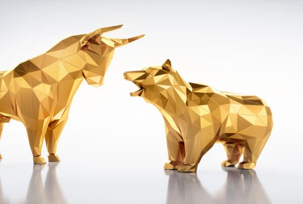 Bull Markets vs Bear Markets Investment Terms Explained