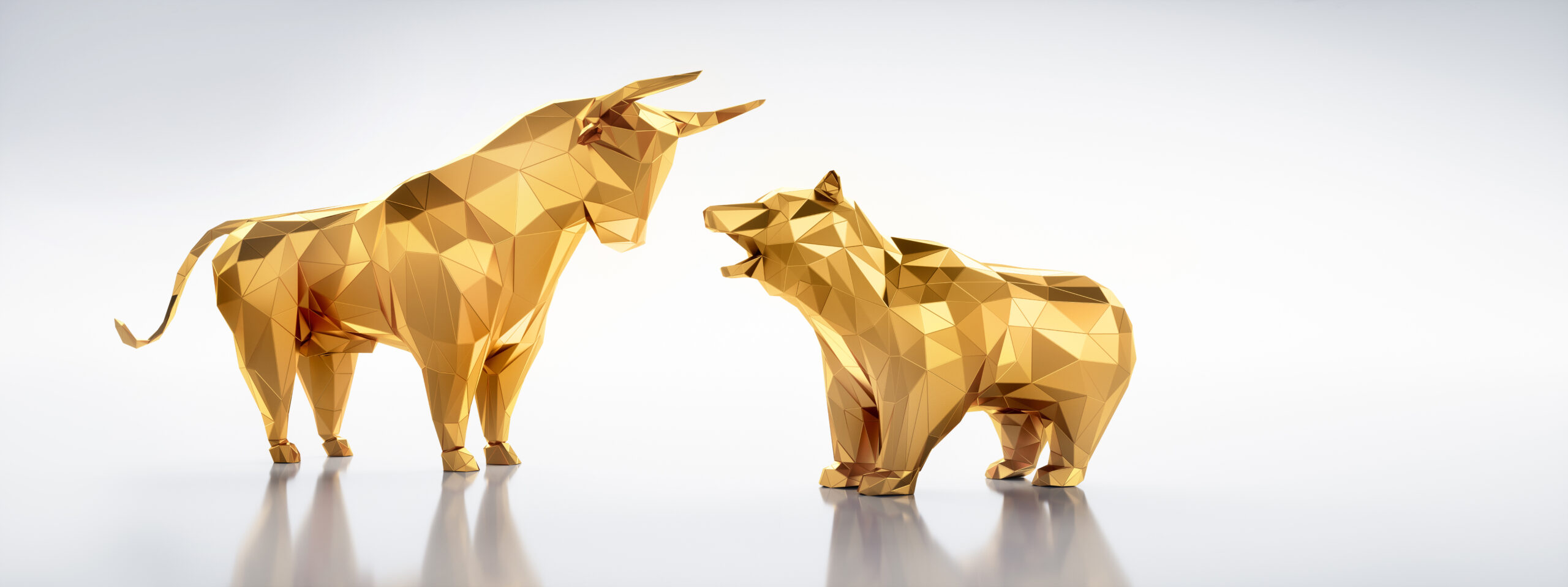 Bull Markets vs Bear Markets